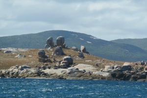 Hobart to Victoria: On to Flinders